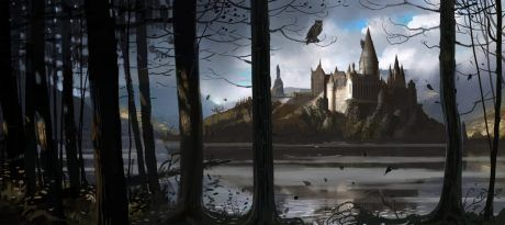 En https://www.pottermore.com/explore-the-story/hogwarts