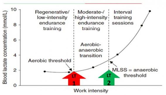 Figura 2. Grafica típica que relaciona la concentración de lactato en sangre con la carga de trabajo, incluyendo la transición aeróbico-anaeróbico como marco para obtener las intensidades de entrenamiento. En https://s11.gr  FTP vs MLSS en Ciclismo